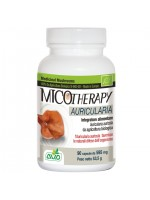 Micotherapy Auricularia 90 Capsule AVD Reform