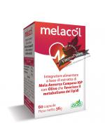 Melacol 60 Capsule AVD Reform Metabolismo lipidico
