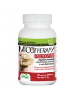 Micotherapy Polyporus 90 Capsule AVD Reform