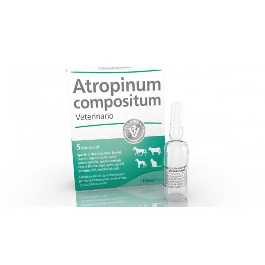 Atropinum compositum Veterinario 5 Fiale