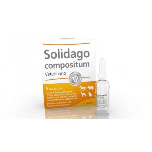 Solidago compositum Veterinario 5 Fiale