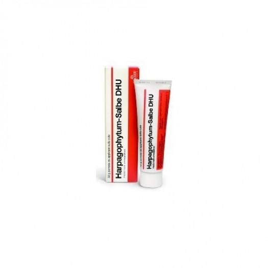 Schwabe Pharma Harpagophytum-Salbe DHU